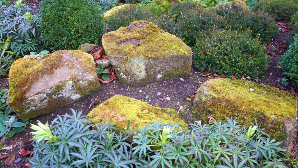 Huge stones in a landscaped area in a new home accompanied by greenery, flowers and natural growth on the rocks.